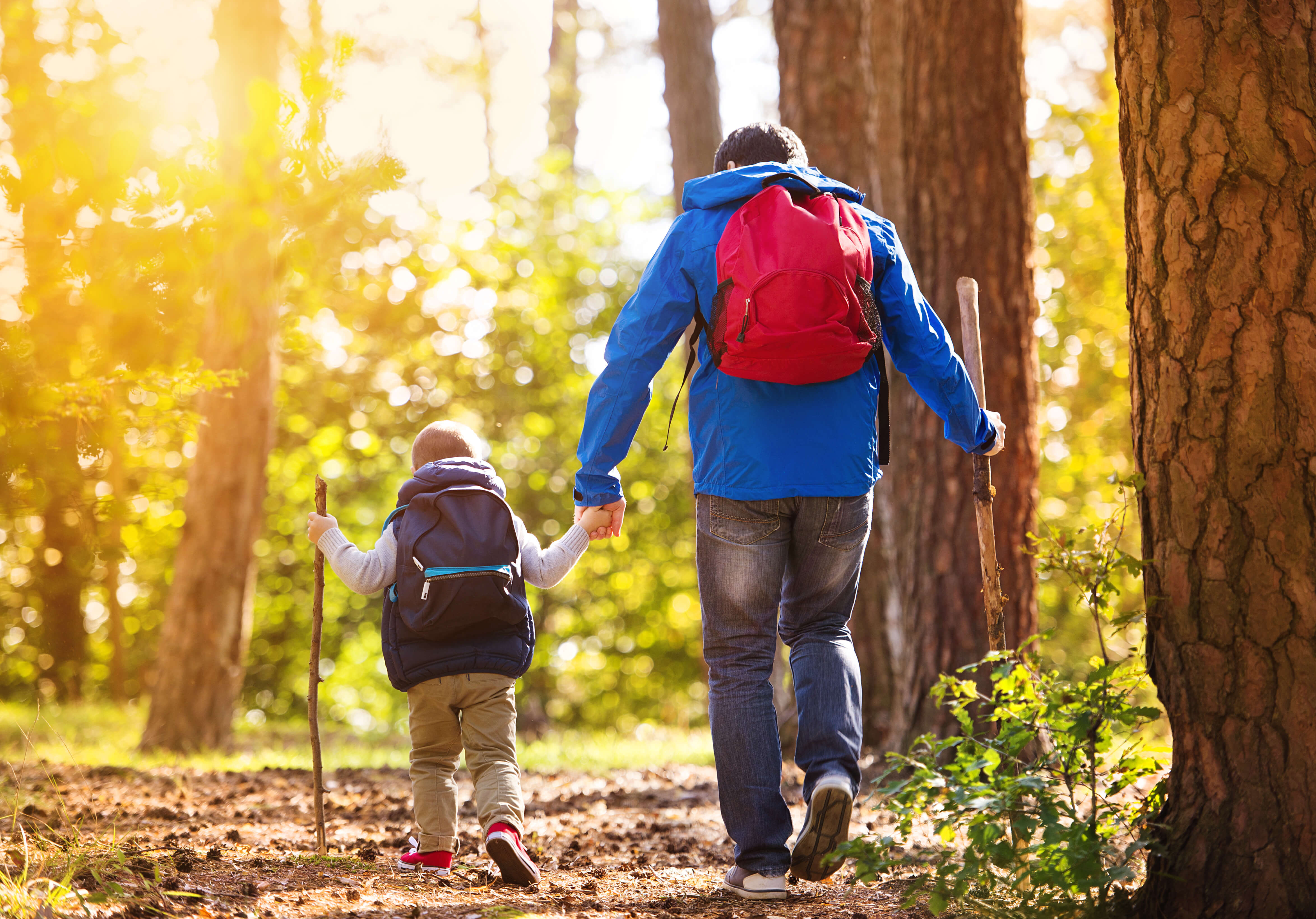 Easy and Kid-Friendly Fall Hikes